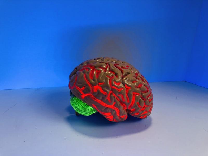 neon, plastic brain