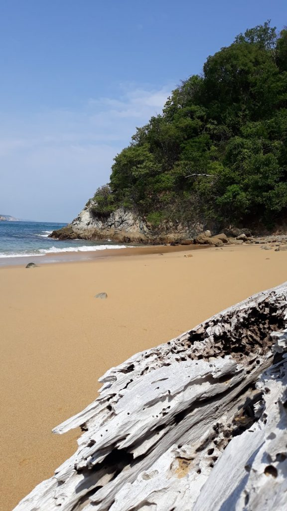 sandy beach with waves lapping foreshoe near a rioky cliff Some Issues And Your Retirement Paradise