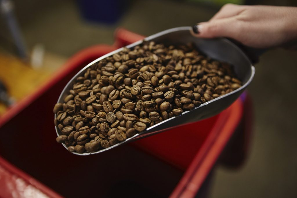 Shovel of Coffee beans about to be roasted at The Mill, Castlemaine.